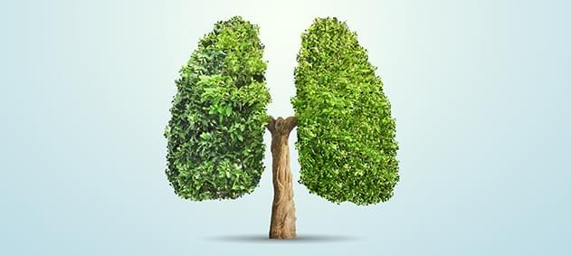 Akciğer Kanserinde Kişiye Özel Tedavi Planlaması