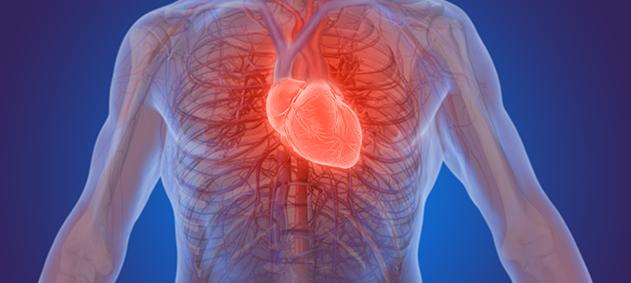 Kalp Kapaklarınız Sorun Çıkarabilir
