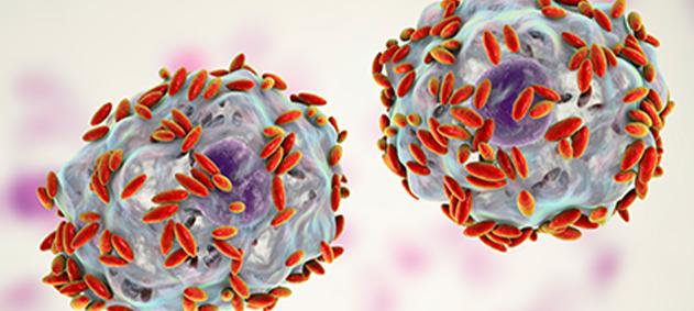 Kadınların Ortak Derdi: Vajinal Enfeksiyonlar