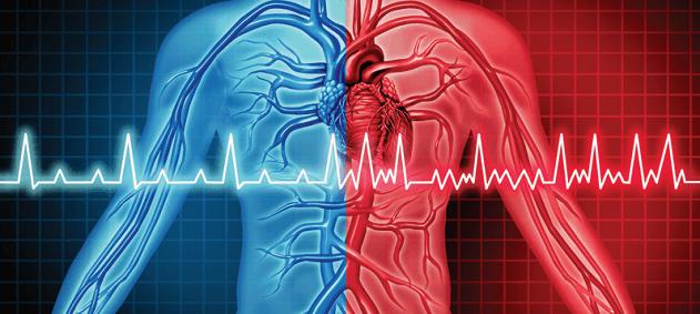 Kalp Ritim Bozukluğu ve Tedavisi