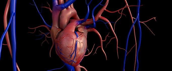 Kalp Kapakçıklarınızda Sorun Çıkabilir